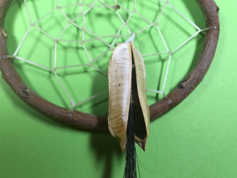 Harley Zephier (Lakota-Dakota) – Traumfänger
