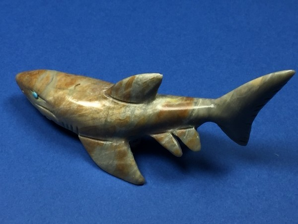 Cody Natachu (Zuni) - Haifisch